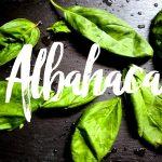 Albahaca + Almendras = Pesto de almendras